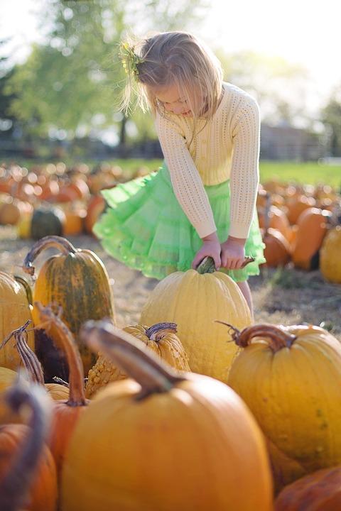 Pumpkins, Little Girl, Autumn, Child, Halloween
