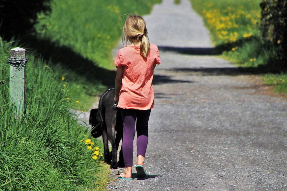 Spacer, Child, Dog, On A Leash, Total, Nature, Way