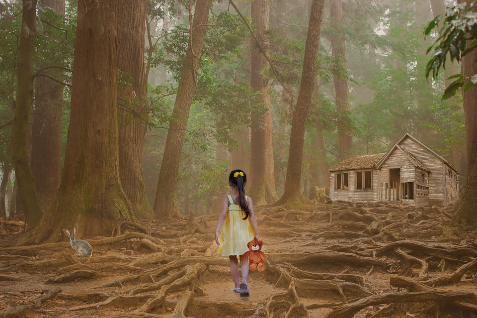 Girl, Child, Teddy Bear, Trees, Forest, Out, Emotion