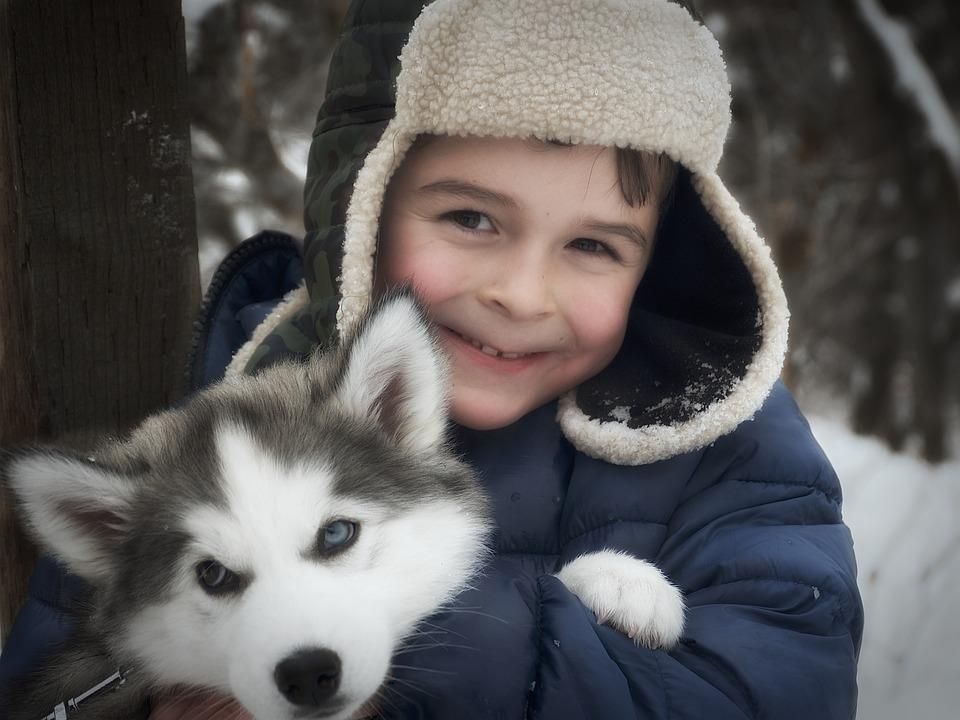 Husky, Child, Boy, Dog, Winter, People, Kid, Childhood