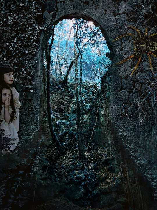 Lost, Forest, Children, Shock, Scared, Gothic, Cover
