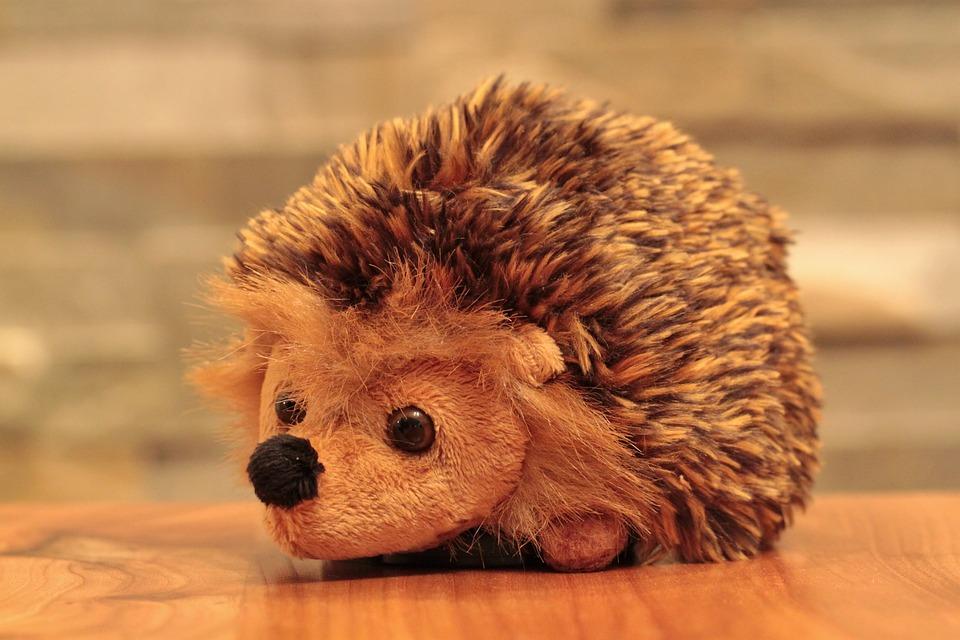 Hedgehog, Animal, Soft Toy, Children Toys, Toys