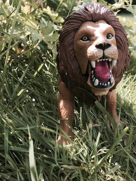 Lion, Toys, Children Toys, Rush, Plastic, Garden