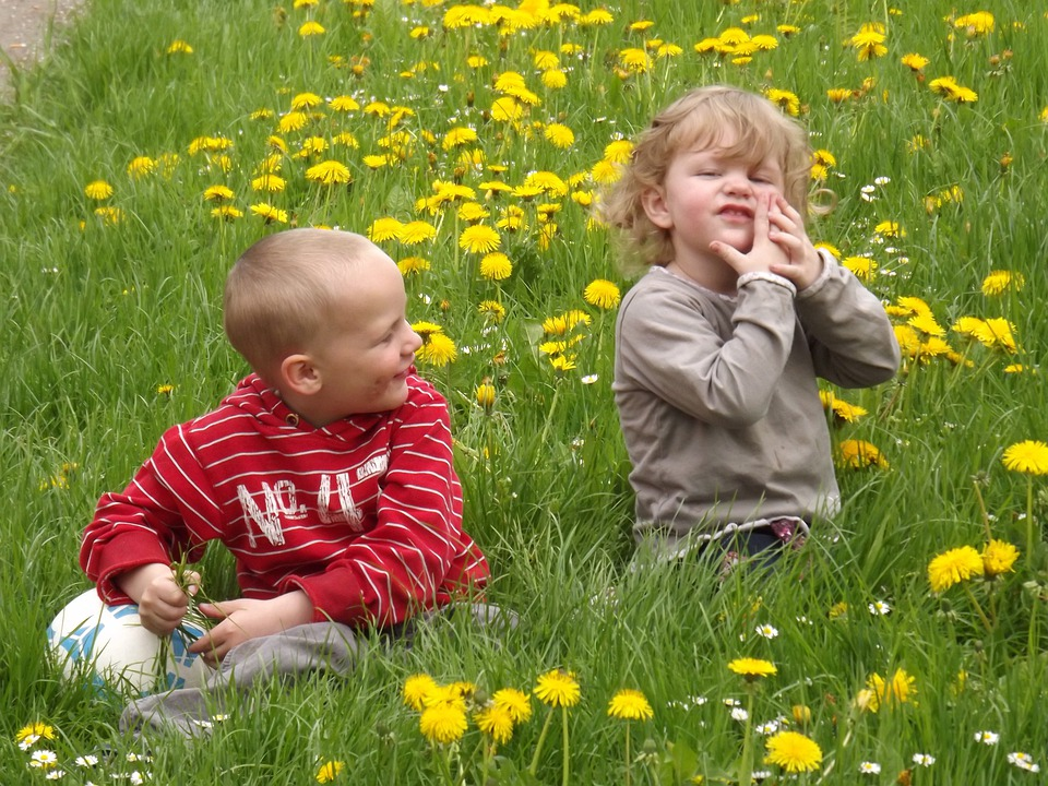 Children, Boy, Girl, Young, Play, Meadow, Making A Face