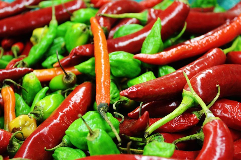 Chili, Colorful, Sharp, Pods