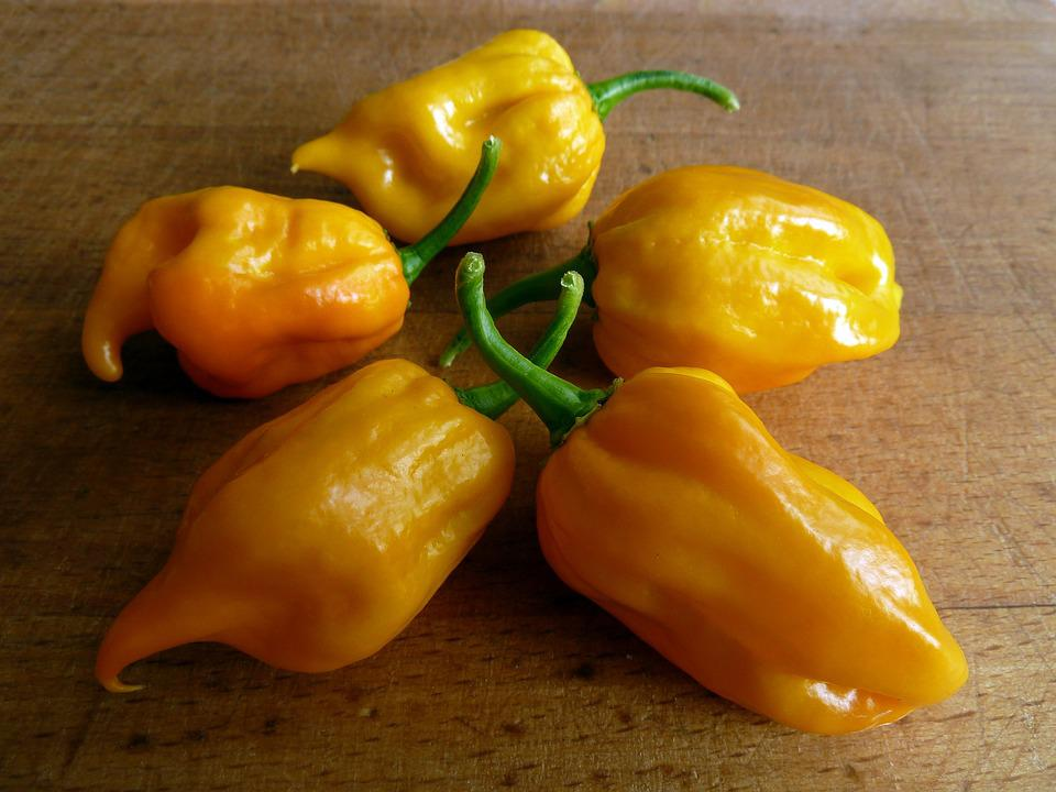 Chili, Habanero, Spicy, Feferon, Peppers
