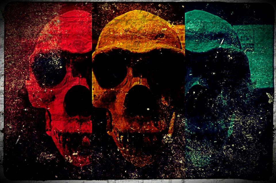 Terror, Fear, Halloween, Chilling, Skull, Scary, Scare