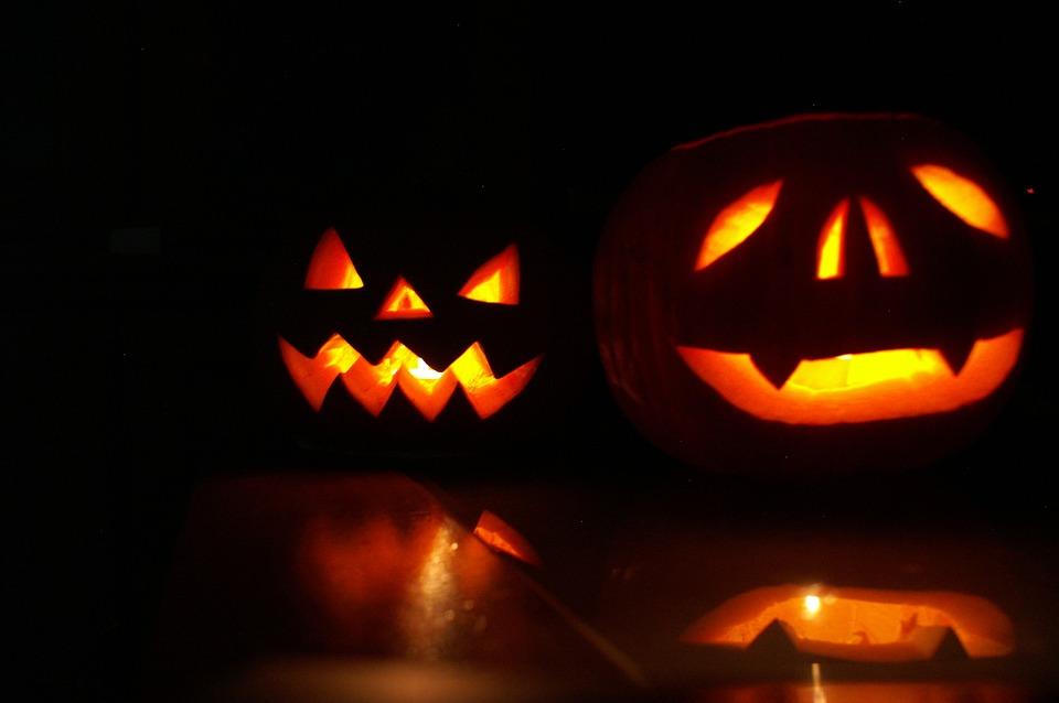 Free photo Chilling Orange Trim Hallowen Halloween Pumpkin - Max Pixel