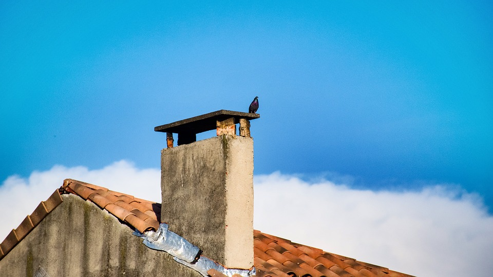 Manosque, Pigeon, Chimney Stack, Rooftop, Clouds