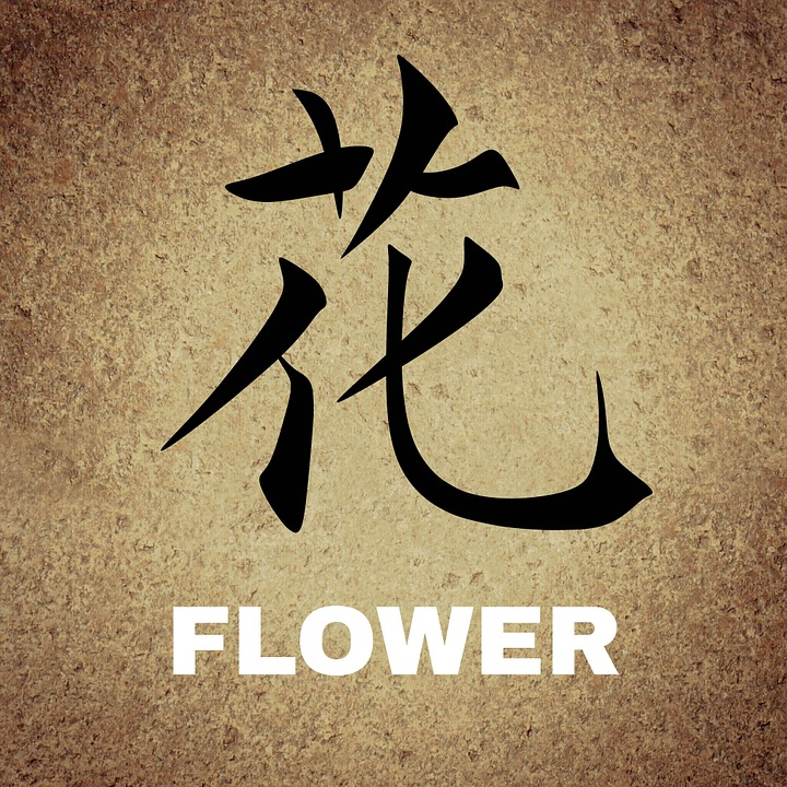 Chinese, Characters, Background, Flower