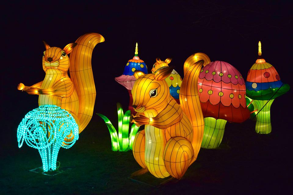 free photo chinese lights night lanterns colors squirrels max pixel