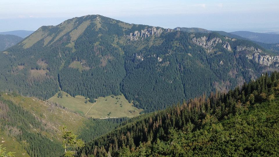 Tatry, Western Tatras, Chochołowska Valley