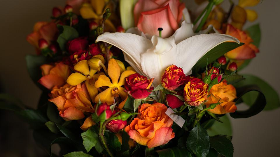 Flowers, Gift, Natural, Love, Give, Birthday, Christmas