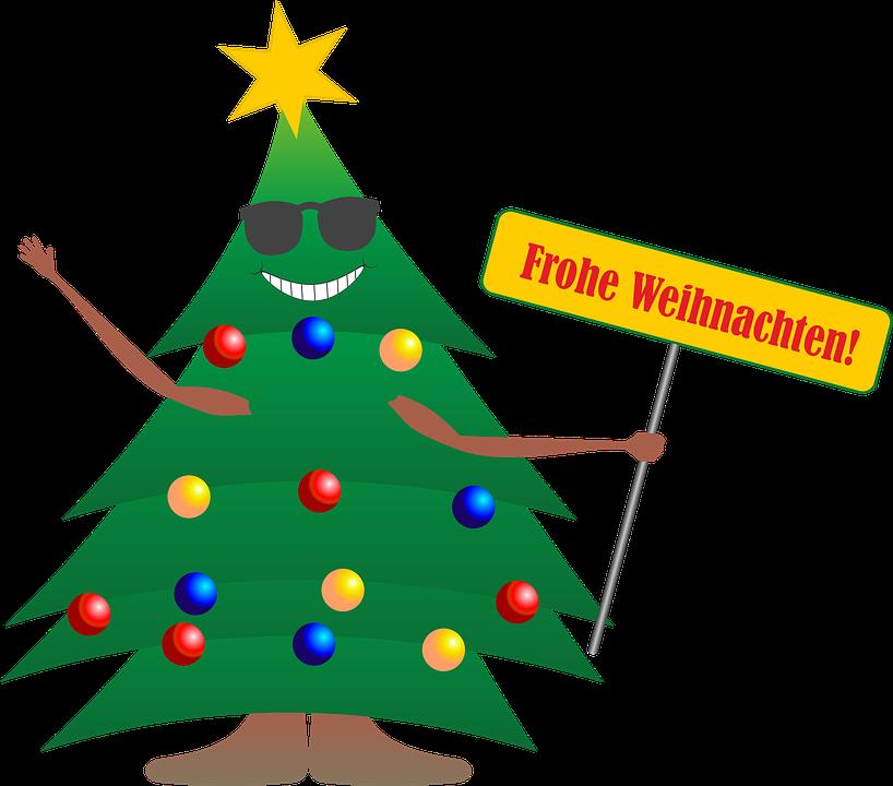 Christmas, Fir Tree, Christmas Tree