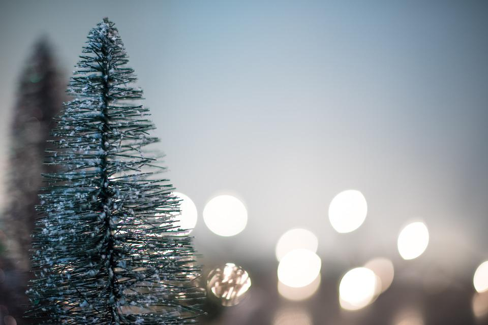 Abstract, Blur, Bright, Celebration, Christmas, Cold
