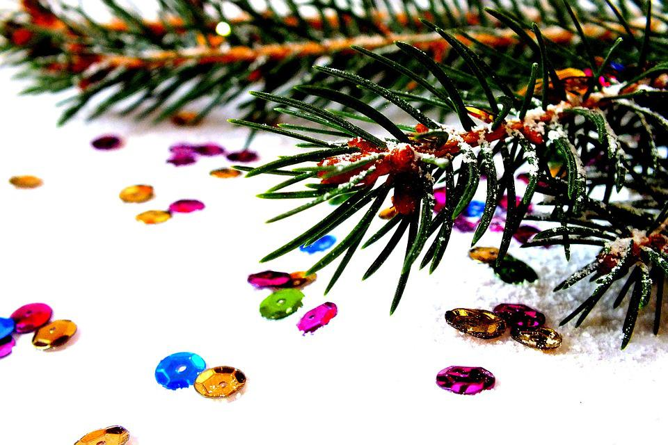 Spruce, Photos Of Christmas, Christmas, Christmas Eve