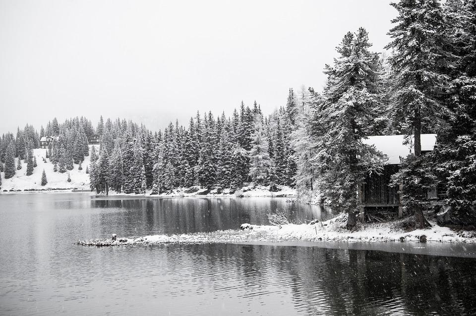 Lake Misurina, Snow, Christmas, Mountain, Green, Fir