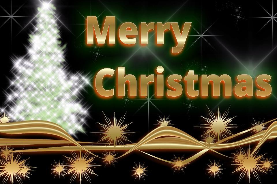 Fir Tree, Star, Christmas, Christmas Card