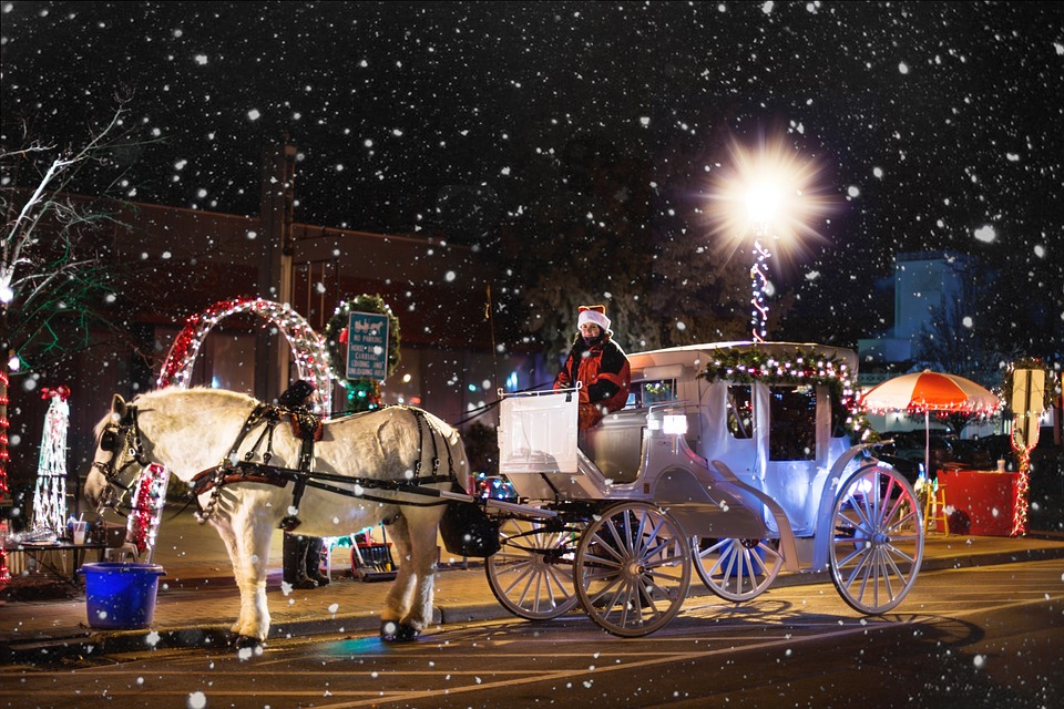Horse Carriage, Wagon, Christmas, Winter, Snowing