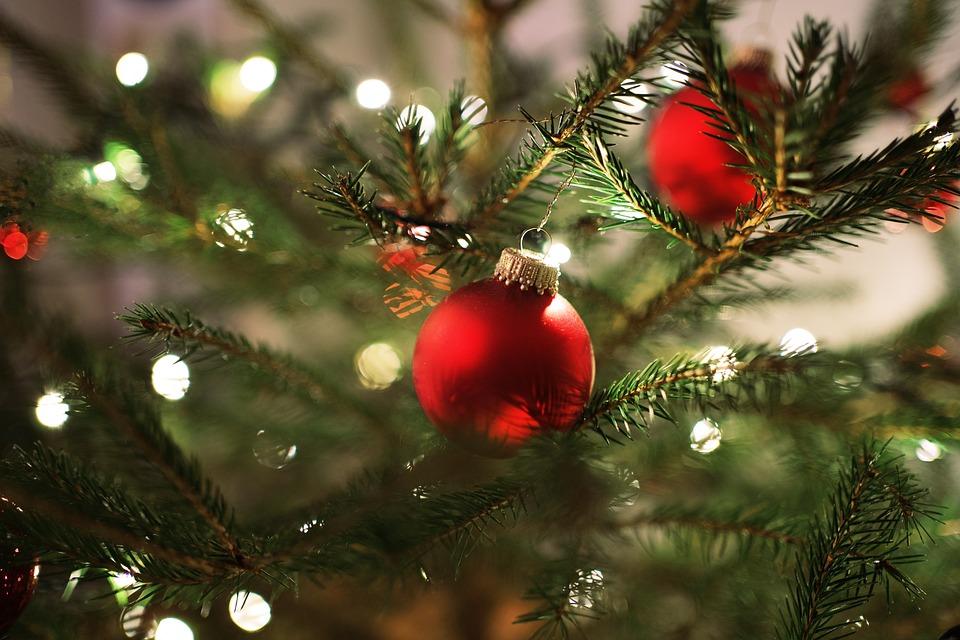 Christmas, Christmas Tree, Advent, Christmas Time