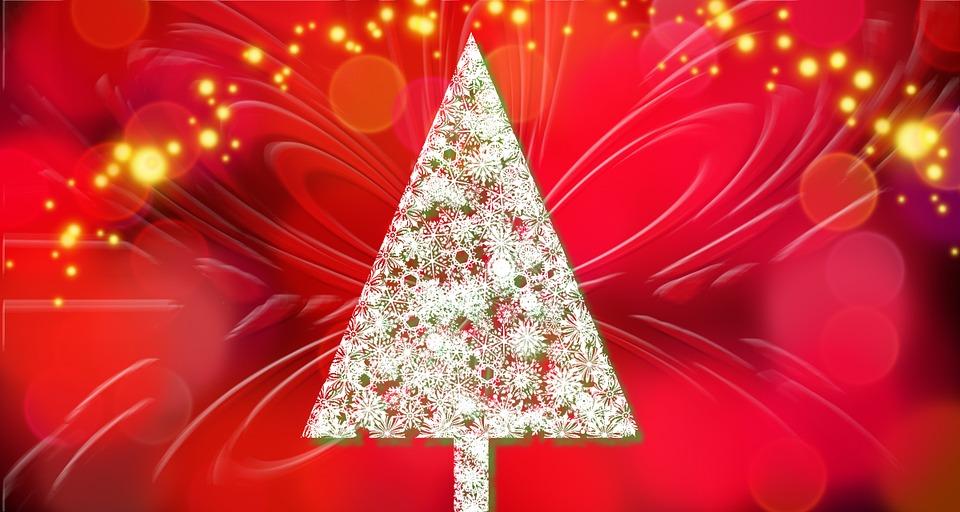 Christmas Tree, Background, Christmas Card, Holidays