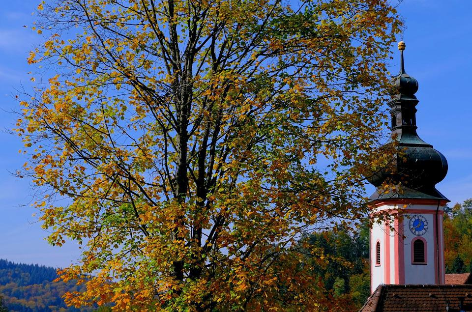 Church, Tower, Building, Autumn