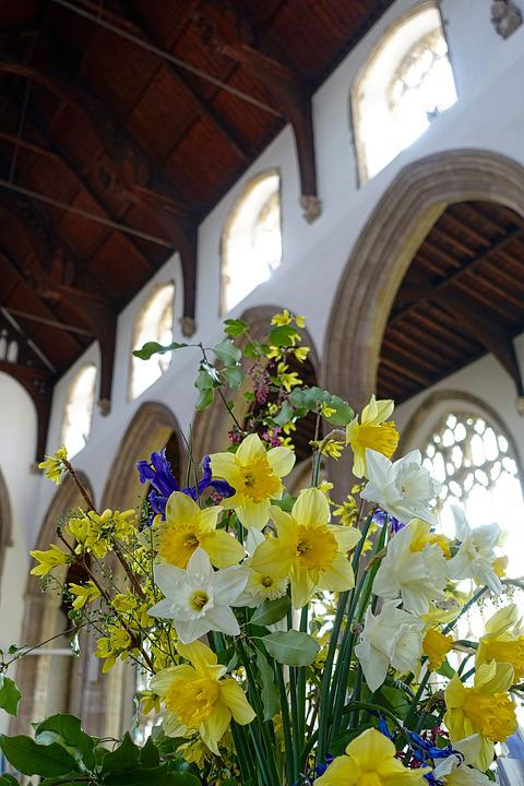 Flowers, Cathedral, Yellow, Daffodils, Religion, Church