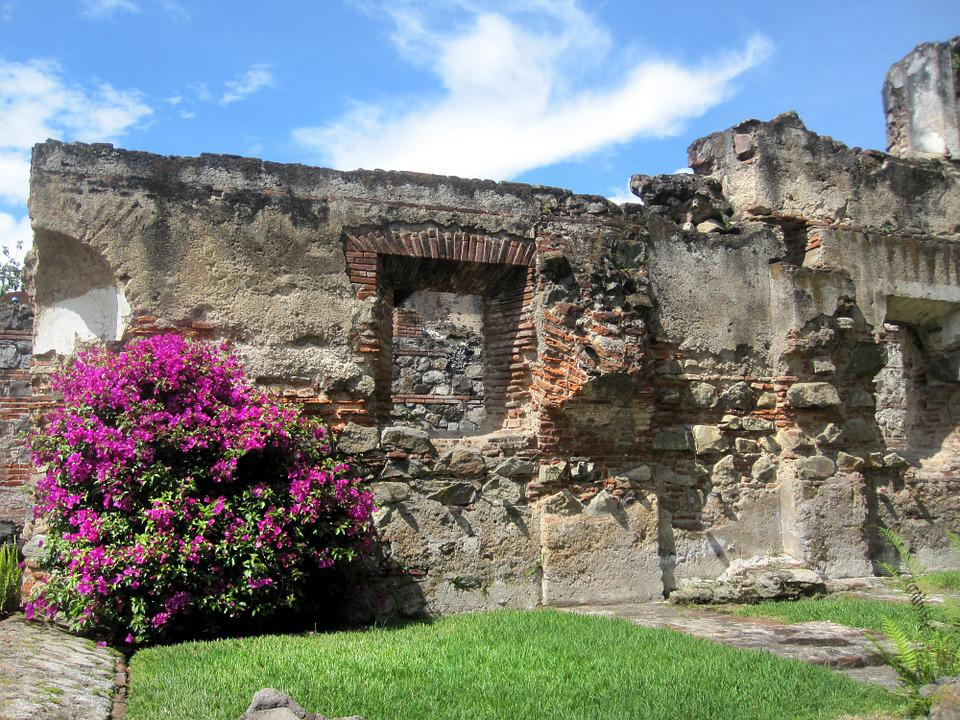 Guatemala, Bougainvillea, Church, Ruins, Antigua