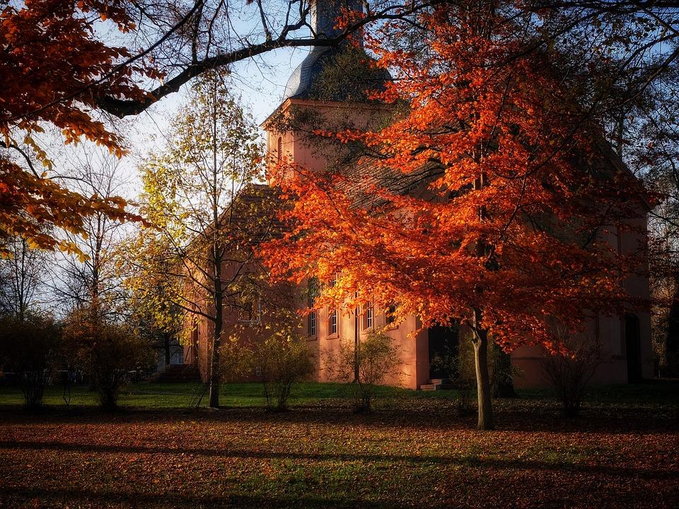 Autumn, November, Leaves, Mood, Church