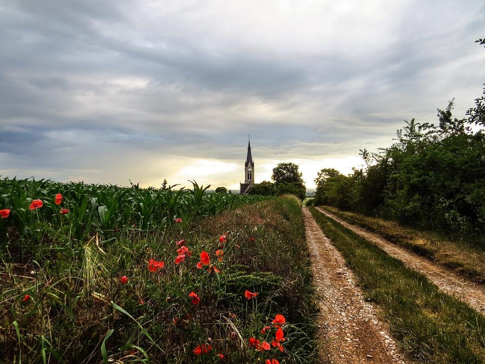 Poppies, Flowers, Field, Church, Away, Lane