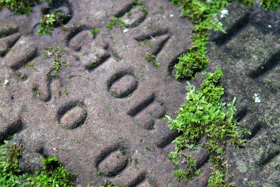 Gravestone, Mossy, Churchyard, Old, Cemetery, Grave