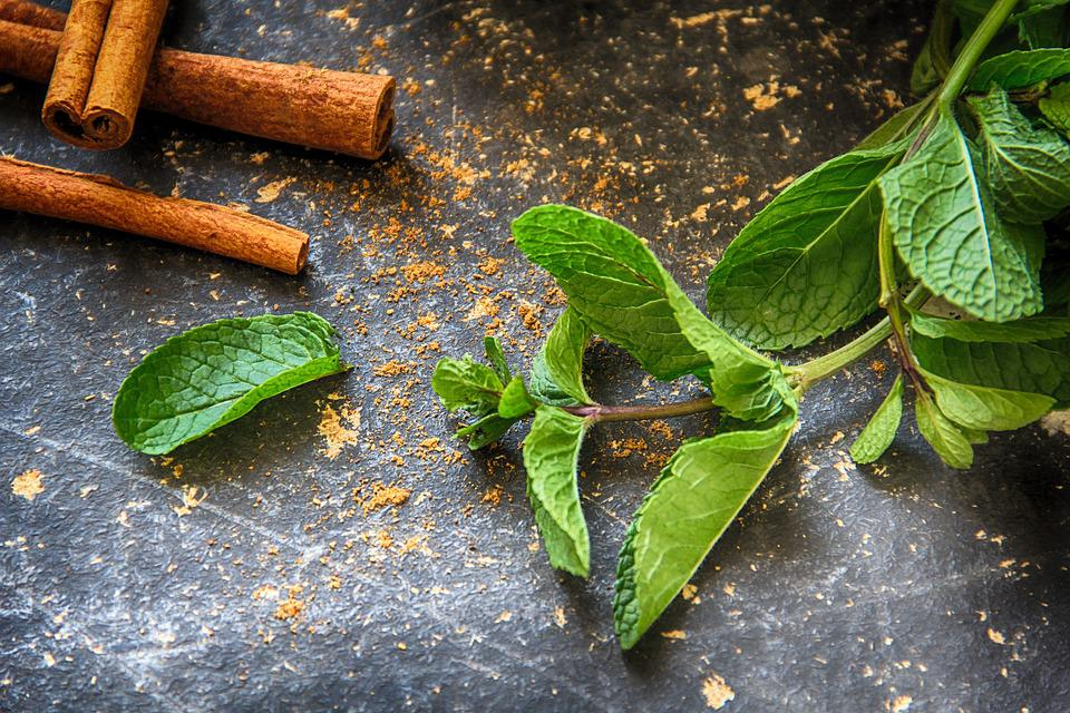 Mint, Mint Leaves, Leaves, Cinnamon, Cinnamon Sticks