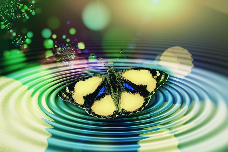 Butterfly, Wave, Circle, Meditation, Reflection, Middle