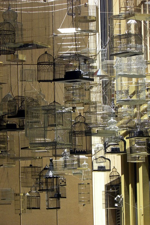 Australia, Sydney, City, Bird Cages