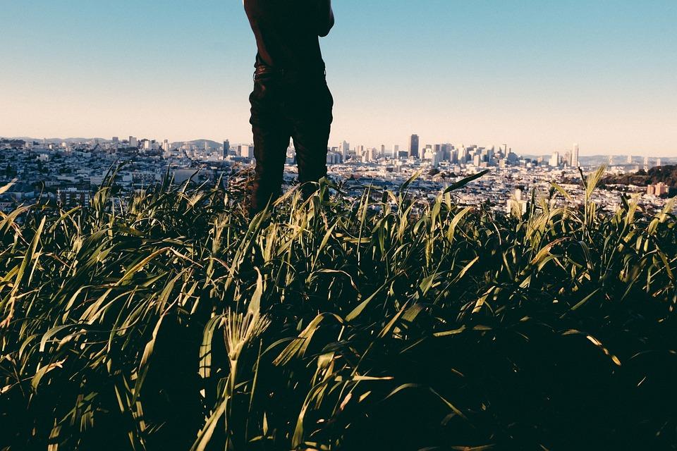 Crops, Plants, Nature, City, Buildings, Sky, People