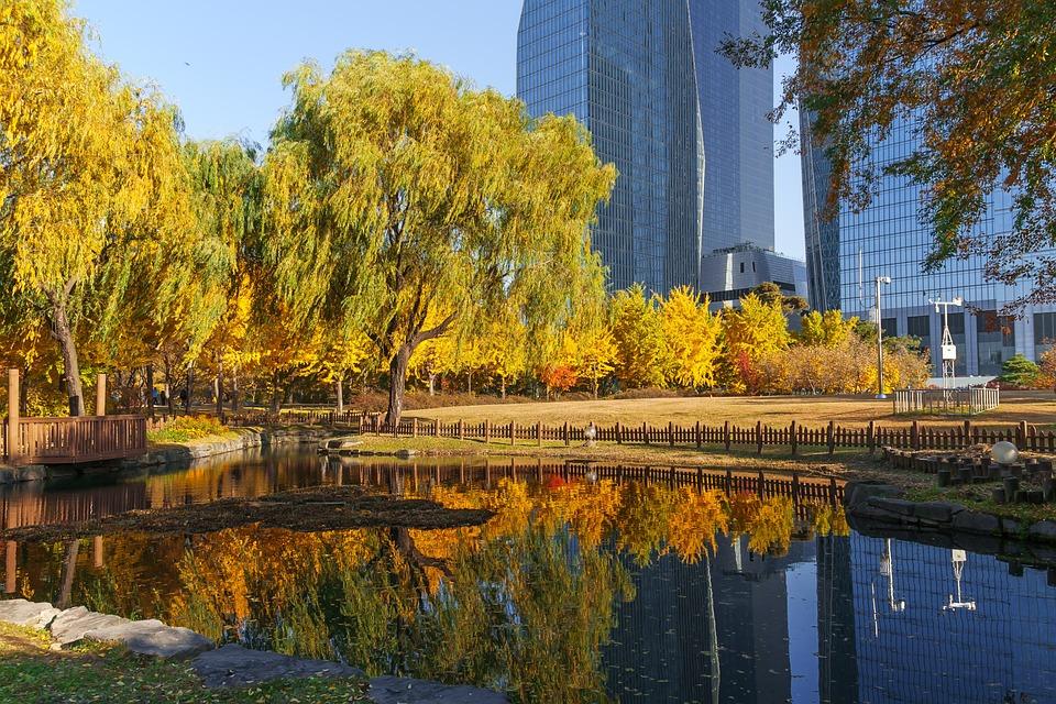 Korea, Seoul, Yeouido Park, Park, City Park, Han River