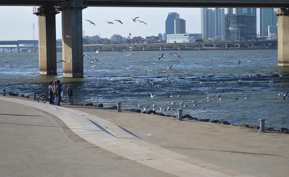 Water, Sea, Outdoors, Travel, Pier, Hanriver, City