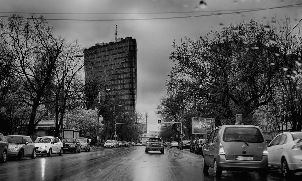 Black And White, City, Cars, Road, Street, Trees, Rain