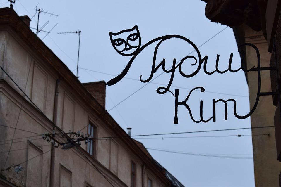 Lviv, Ukraine, Cat, City, Tourism, Street, At Home