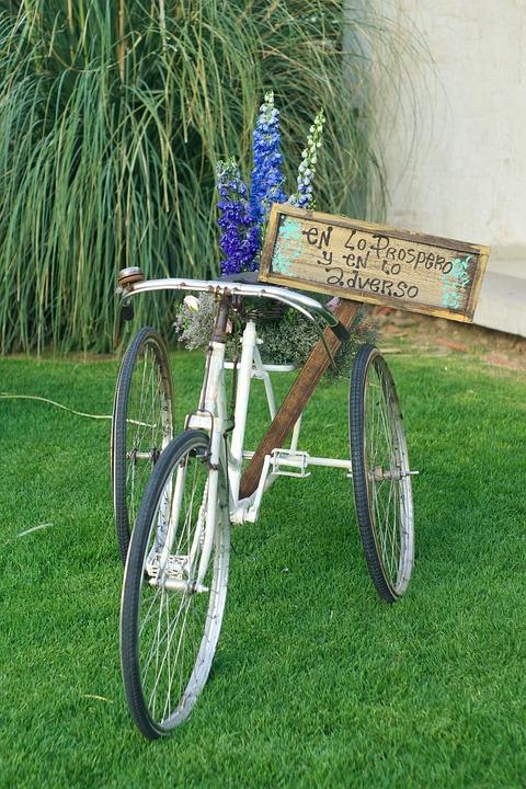 Wedding, Vintage, Trim, Classic, Garden, Bicycle