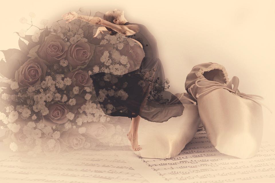 Ballet, Roses, Elegance, Classical, Shoes