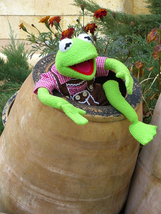 Kermit, Frog, Green, Barrel, Ton, Clay Pot, Joy, Fun