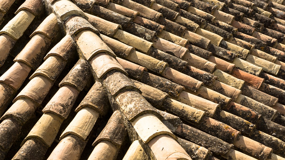 Clay Roof, Slate Roof, Tile Roof, Ceramic Roof, Pattern