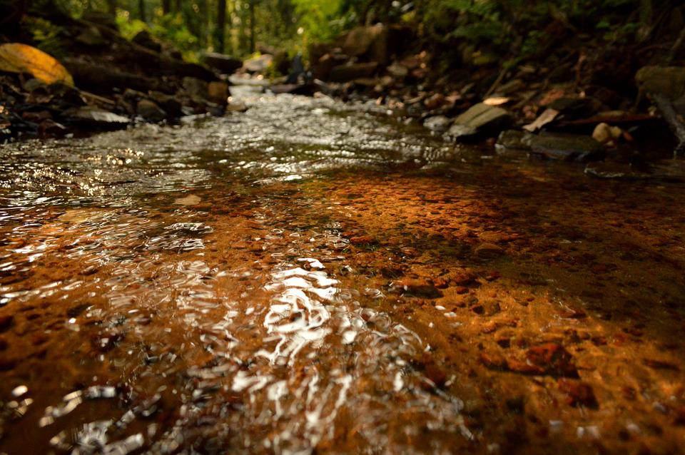 Flowing Water, Clear And Transparent, Stream, Ricer