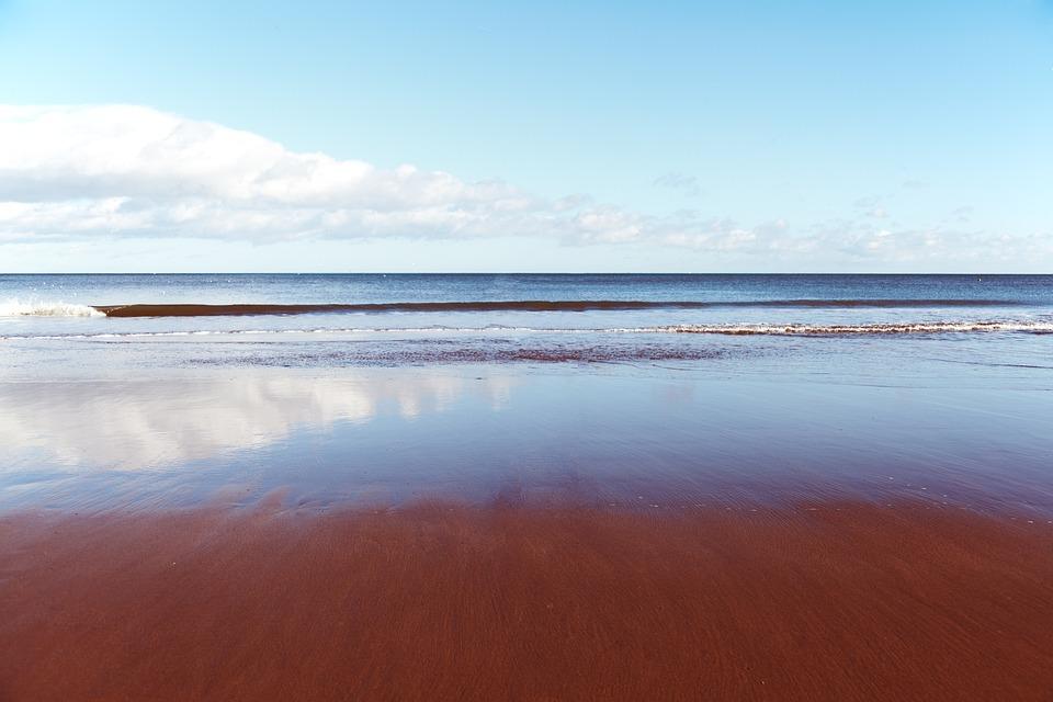 Background, Blue, Clear, Coast, Horizon, Landscape