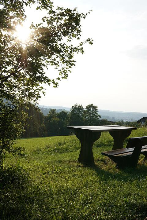 Sun, Bank, Relax, Click, Recover, Forest, Backlighting