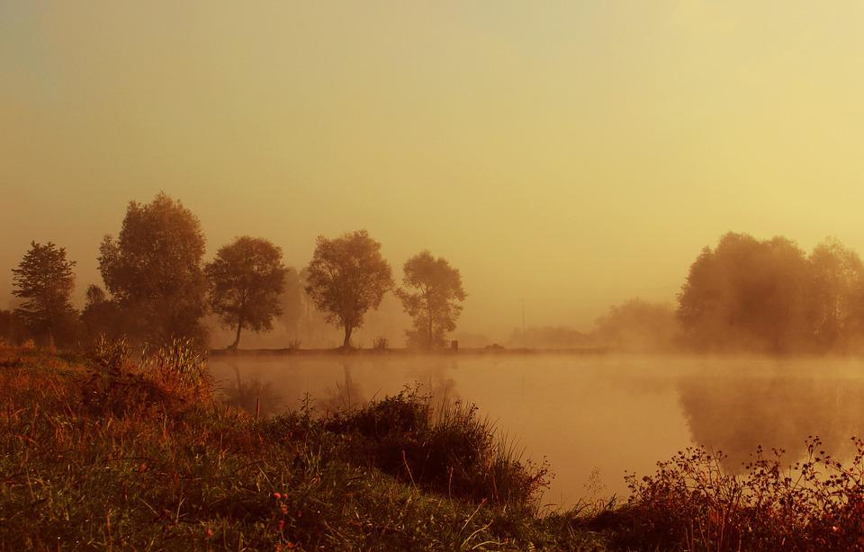 Lake, Morning, Nature, The Fog, Pond, Water, Climate