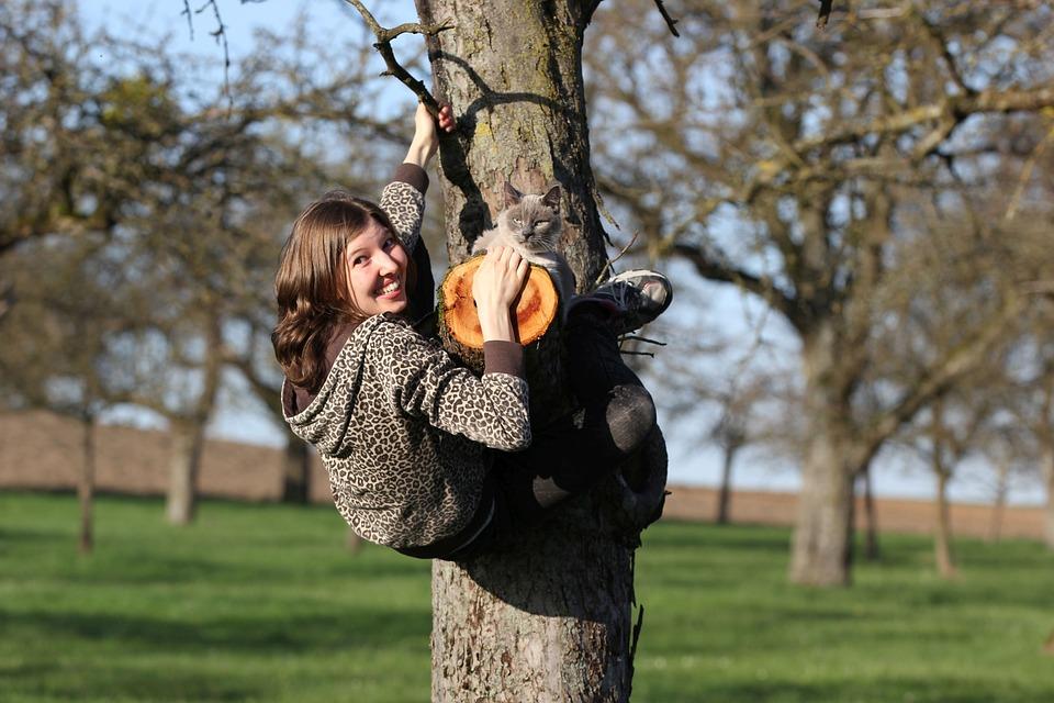 Human, Cat, Tree, Climb, Nature, Spring