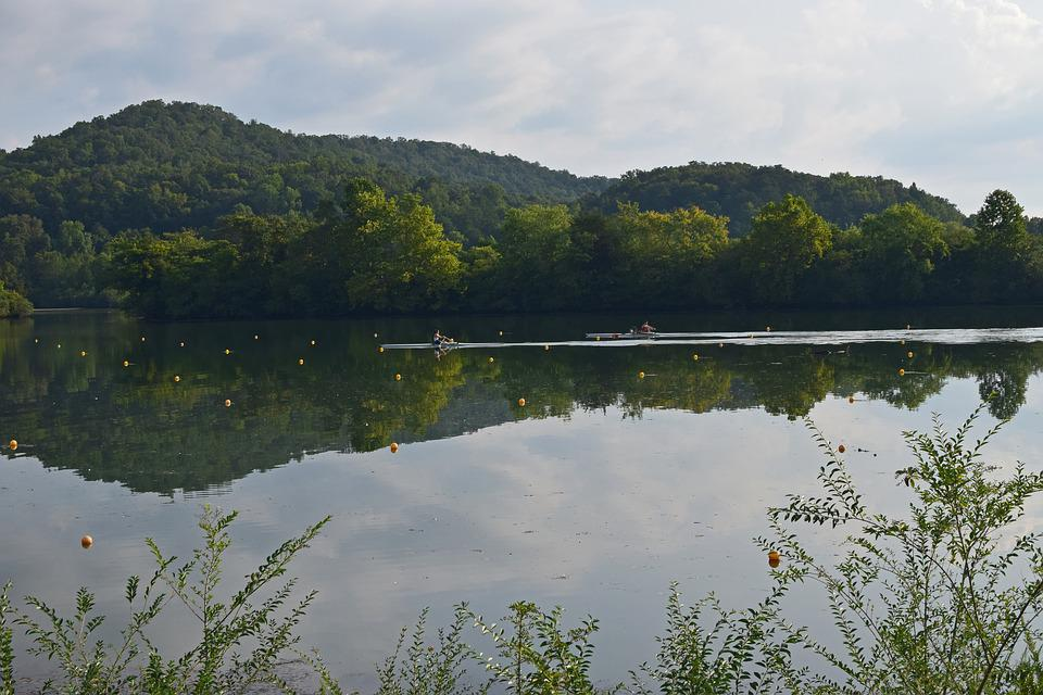 Scull Rowers, Scull Rowing, Rowing, Sport, Clinch River
