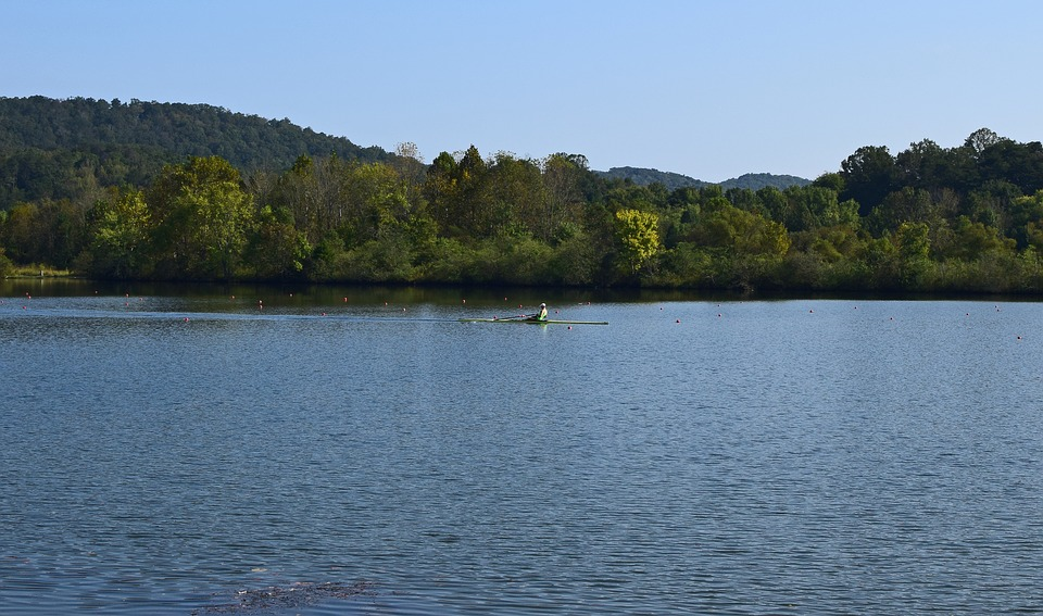 Scull Rower, Scull Rowing, Rowing, Sport, Clinch River